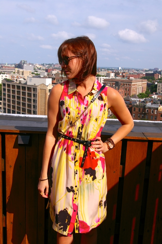 Anthropologie dress, Linea Pelle belt, Boston blogger